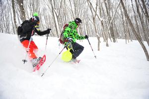 全日本スキー技術選大会のお知らせ