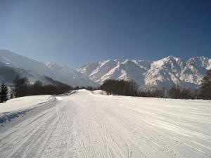春スキーゲレンデ状況