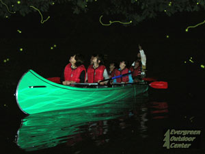 Night Firefly Canoe Tours on Lake Aoki