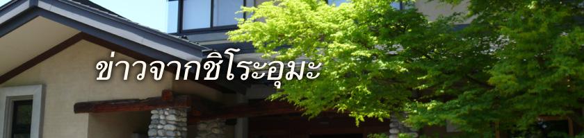 ข่าวจากชิโระอุมะ-โซ